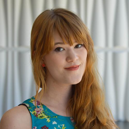 Mariel Van Norman, Engineering Consultant