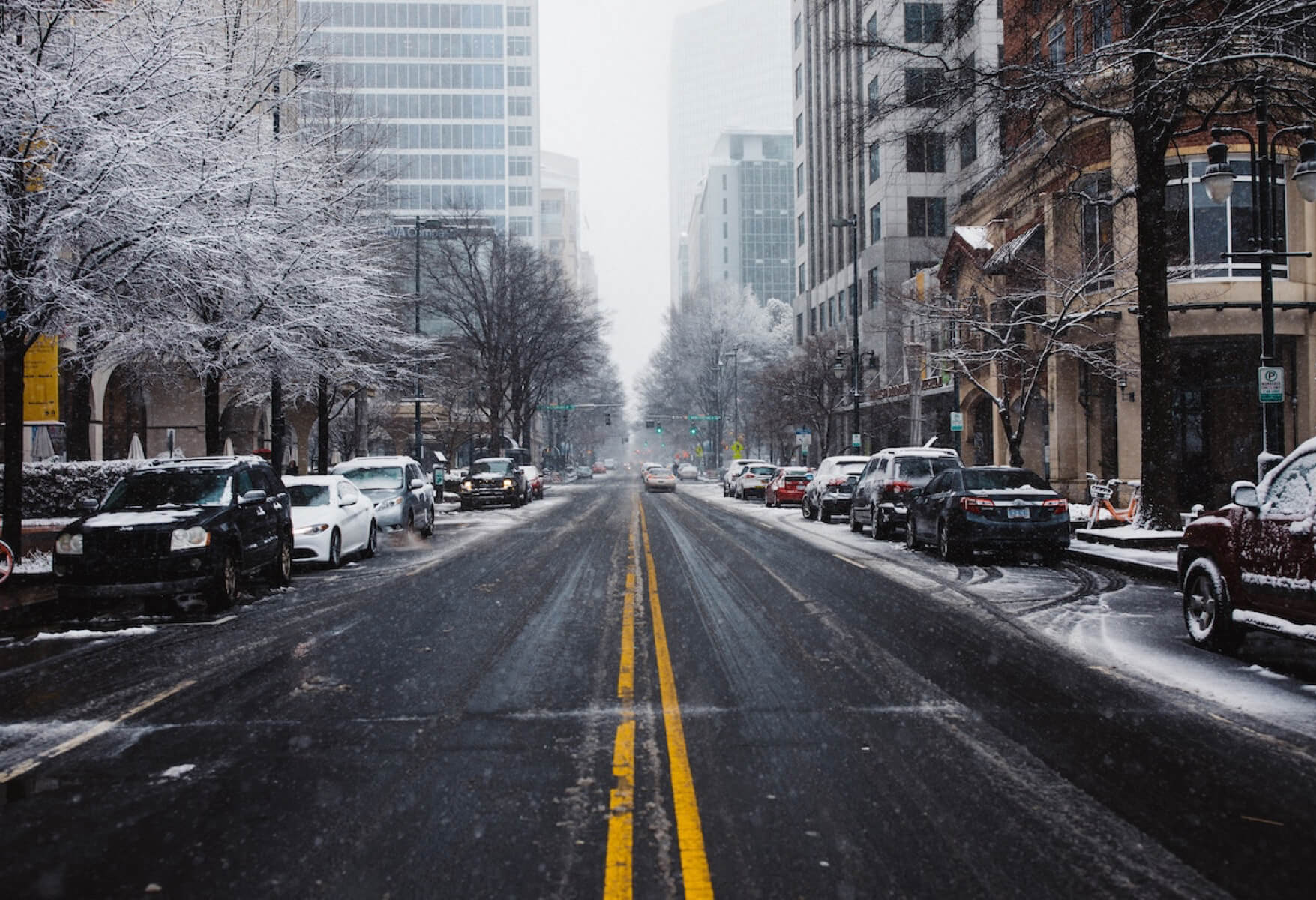 Snowy Charlotte